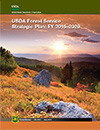 USDA Forest Service Strategic Plan